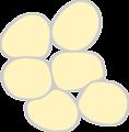 Adipose Tissue