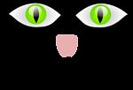 Cat -9