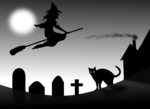 Cat -4