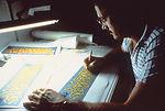 This was CDC graphic artist Travis Benton working