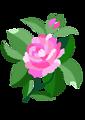 Design for damask rose