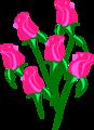Architetto -- rose 3