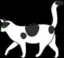 white cat walking