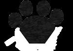 Black Cat Paw