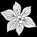 GG cornus canadensis