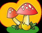 Mushroom ???
