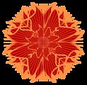 colorful rosette