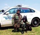 Military working dog dies defending freedom