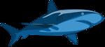 Shark Pure