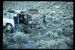 Bighorn Sheep release  Wildlife  LSRD  Lower Snake River District