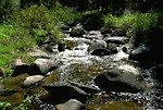 Water in Moose Creek shimmering in the sunlight