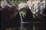 A small waterfall fills into a pool in the Arizona wilderness.