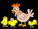 Hen with three chicken