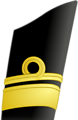 Updated Canada's Rear Admiral  Category:Military rank insignia of Canada