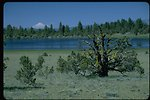 Upper Midway Reservoir with Mt. Shasta in distance.