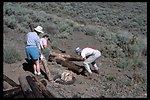 Pueblo Mountain WSA volunteer project with the Desert Train Association on top of Pueblos.  (WSA 2-81)