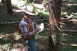 Kevin Dow marking trees in the Camas East Timber Sale.