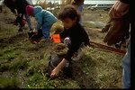 Children participate in habitat improvement project at Lakeview Ranch Lincoln County, Washington.