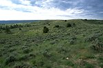 Grassland and sagebrush in the Four Dances Natural Area