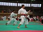 Lietuvių:  2007 m. Europos tradicinio karate čempionato metu, gegužės 27 d. Koper, Slovėnija. Arčiau - Laimonas Nišniava, iškovojęs sidabro medalį fuku-go rungtyje.