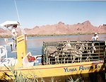 Wild burros being transported by boat to a holding facility due to the gather being located in the wilderness area.