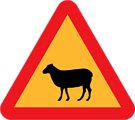 Warning Sheep Roadsign