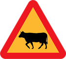 Warning Cows Roadsign