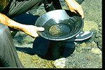 Gold panning at Sixes River.