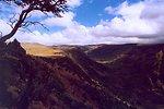 Little Blitzen near Pratt Overlook, Steen's Mountain.