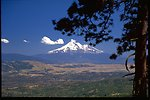 Scenic view of Mount Shasta.