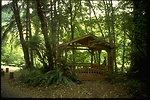 Picnic shelter at Whitaker Creek.