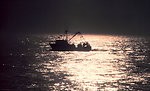 A small fishing boat caught in the sparkle of the late afternoon sun.