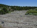 Bridge Creek, dredge placer tailings  Owyhees  Lower Snake River District