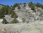 Demmings Mine, Millsite on North Fork Boulder Creek in Owyhees  Lower Snake River District  LSRD
