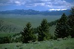 Green valley in the Humbug Spires Wilderness Study Area
