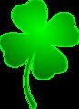 Irish Lucky Clover