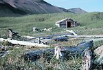 Old settler's cabin in Wide Bay - Shelikof Straits area