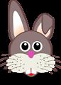 funny bunny face