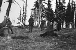 Hunting bear on Hardwater Ridge C. 1904.  Tom Pollard, Abnego Pollard, George Billings, Ivin Billings, Annie Billings and Evered Billings.