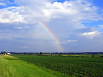 Summer rainbow over open field