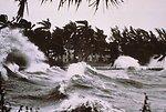 Tropical storm waves batter a palm-tree graced shoreline.