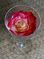 Glass of rosé