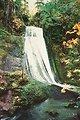 Upper Wolf Creek Falls (Mid-Flow level).