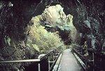 Inside Thurston Lava Tube