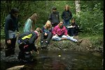 Members of the Cascade Stream Watch are sitting on the stream bank near the Wildwood Recreation Site.