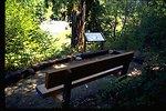 Bench along trail to Deadline Falls.