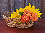 Baskets of flowers sunflower