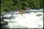 Rafting on the North Umpqua River.