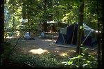 A campsite along the North Umpqua River.