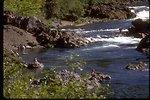 North Umpqua River Series.
